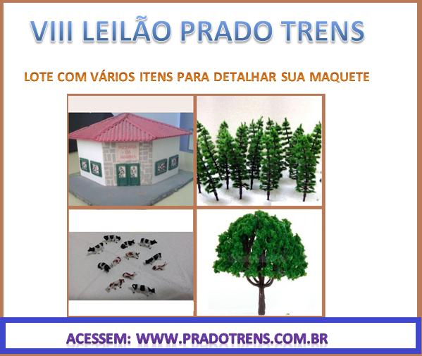 VIII LEILAO PRADO TRENS